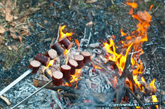 Grilled sausages. Above the campfire Royalty Free Stock Photo