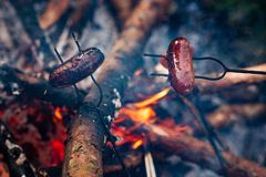 Grilled sausages above the campfire Stock Photos