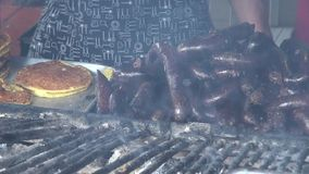 Grilled Sausages, BBQ, Barbeque, Cooking stock video