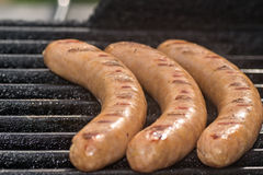 Grilled sausages on grill royalty free stock images