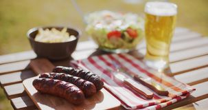 Grilled sausages and salads for a summer picnic stock video footage