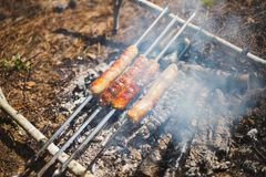Grilled sausages in the smoke on a small campfire royalty free stock photos