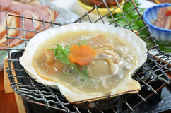 Grilled scallop. Fresh grilled scallops on stove Stock Images