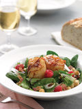 Grilled scallop spinach raspberry salad royalty free stock images