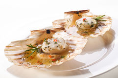 Grilled scallops Stock Photos