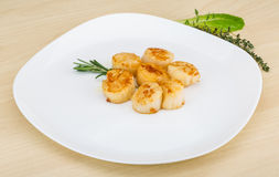 Grilled scallops Royalty Free Stock Images