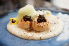 Grilled scallops with caviar and molecular froth. Pan seared sea scallops with caviar and molecular froth on blue clay plate, close-up Stock Photo