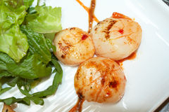 Grilled scallops with lettuce, indian style Stock Image