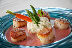 Grilled scallops Stock Photography