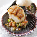 Grilled Scallops with Salsa Stock Photography