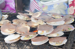Grilled scallops in seafood market. Stock Photos