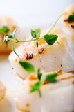 Grilled scallops with thyme leafs Royalty Free Stock Photos