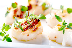 Grilled scallops with thyme leafs Royalty Free Stock Photo