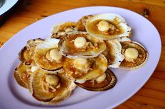 Grilled scallops topped with butter, garlic and onion Stock Photos