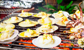 Grilled scallops topped with butter, garlic and parsley. Stock Image
