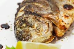 Grilled sea bass closeup. Stock Photo