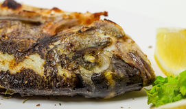 Grilled sea bass closeup. Royalty Free Stock Images