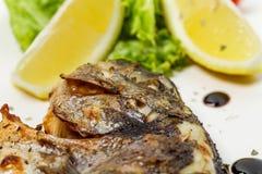 Grilled sea bass closeup. Stock Image