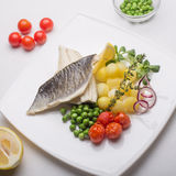 Grilled sea bass fish Royalty Free Stock Photography