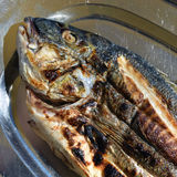 Grilled sea bass fish Stock Photo