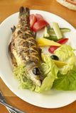 Grilled sea bass with fresh vegetables Royalty Free Stock Photos