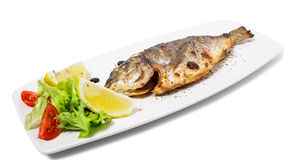 Grilled sea bass. Stock Image
