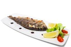 Grilled sea bass. Stock Photos