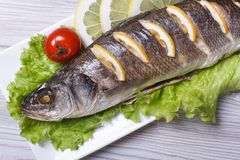 Grilled sea bass with lemon and lettuce top view. horizontal Stock Images