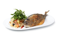 Grilled Sea Bream Royalty Free Stock Image