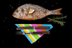 Grilled sea bream fish. Royalty Free Stock Photos