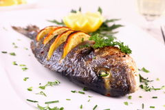 Grilled sea bream fish, lemon, arugula on white plate Royalty Free Stock Photography