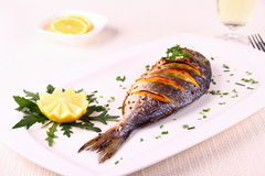 Grilled sea bream fish, lemon, arugula on white plate Stock Photo