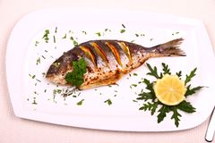 Grilled sea bream fish, lemon, arugula on white plate Royalty Free Stock Photos