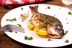 Grilled sea bream fish, lemon on white plate Royalty Free Stock Images
