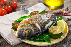 Grilled sea bream fish Stock Photography