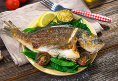 Grilled sea bream fish. On wooden background Stock Photos