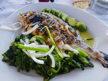 Grilled sea bream plate with vegetable Royalty Free Stock Image