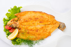 Grilled sea fish from above. Stock Photography