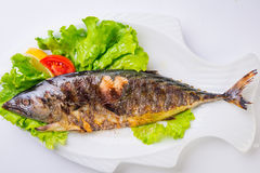 Grilled sea fish from above. Royalty Free Stock Images