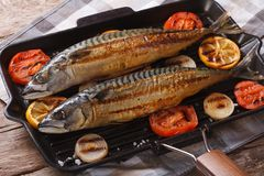 Grilled sea fish and vegetables in a pan grill, horizontal Royalty Free Stock Photos
