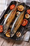 Grilled sea fish and vegetables in a pan grill, vertical top vie Royalty Free Stock Photos