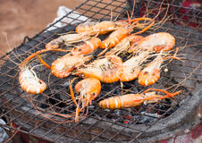 Grilled sea food Stock Image