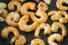 Grilled sea shrimps stock photo
