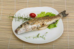 Grilled seabass Royalty Free Stock Image