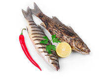 Grilled seabass fish Royalty Free Stock Photos