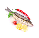 Grilled seabass fish. Royalty Free Stock Photography