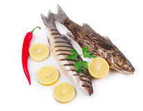 Grilled seabass fish. Royalty Free Stock Photo