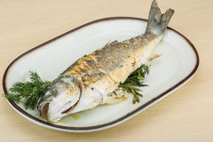 Grilled seabass Royalty Free Stock Photo