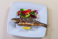 Grilled seabass with lemon Stock Photos