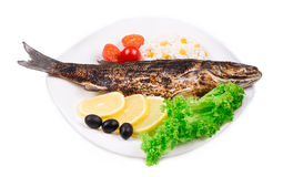Grilled seabass on plate. Stock Photography